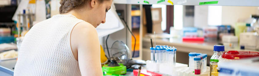 Bio-Medical Sciences and Engineering Program Overview